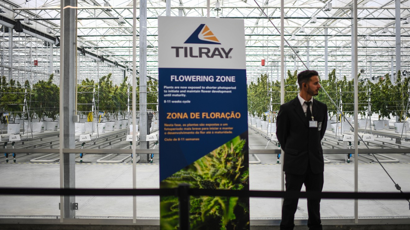 Cannabis Watch: Tilray states coronavirus has not materially affected its ability to sell cannabis